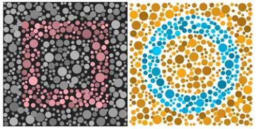 Free Color Blindness Test App From Enchroma Can You See