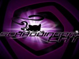 Schrödinger's Cat and the Raiders of the Lost Quark Launch Trailer[Video]