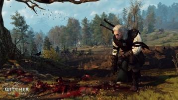 The_Witcher_3_Wild_Hunt_Alas,_poor_Yorick