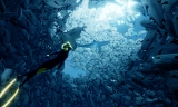 ABZU | First 30 Minutes of Gameplay and Impressions |PS4